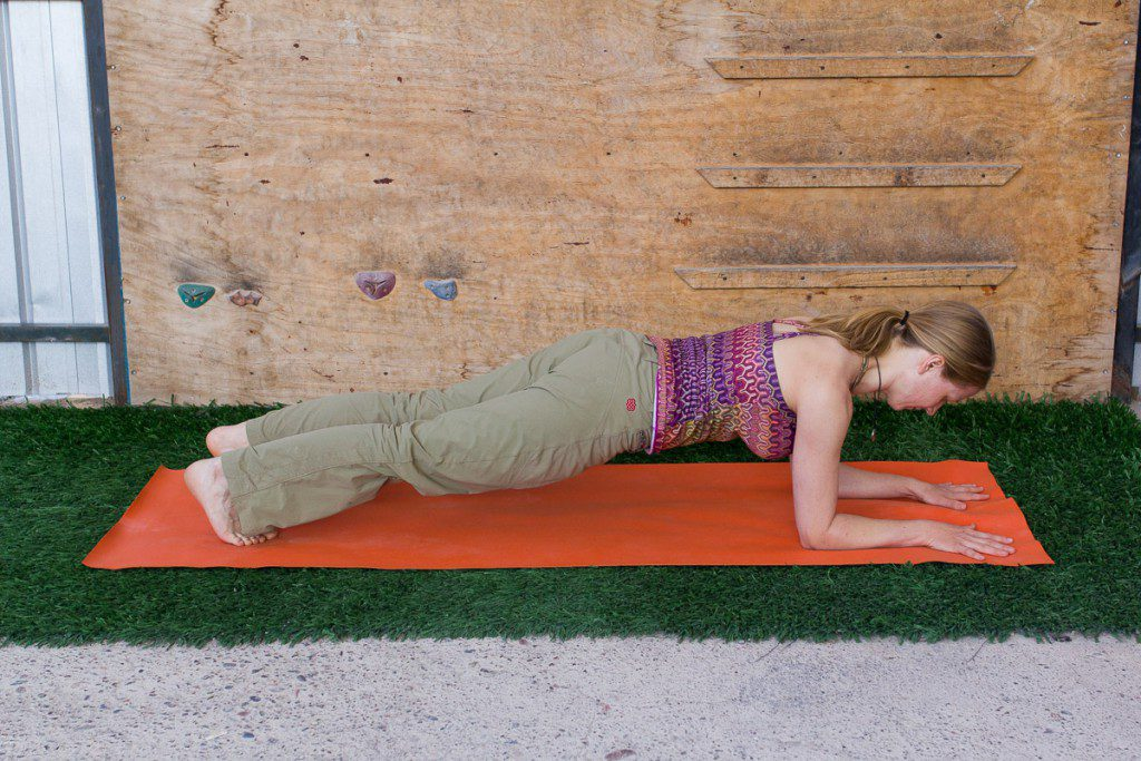 yoga for climbers alignment-dolphin-plank-pose training the mind